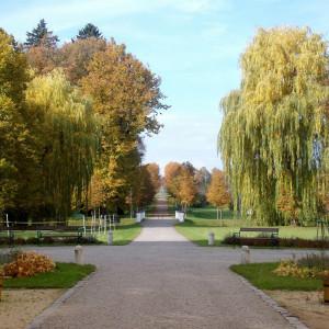 Myslibořice park