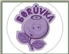 Odlehčovací služba Borůvka